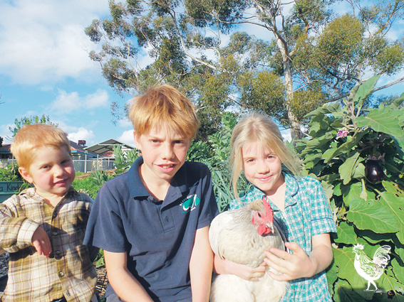 • Julien, 4, Daniel, 10 and Luna, 7 with chook Pixie at Hilton Harvest. Photo by Carmelo Amalfi