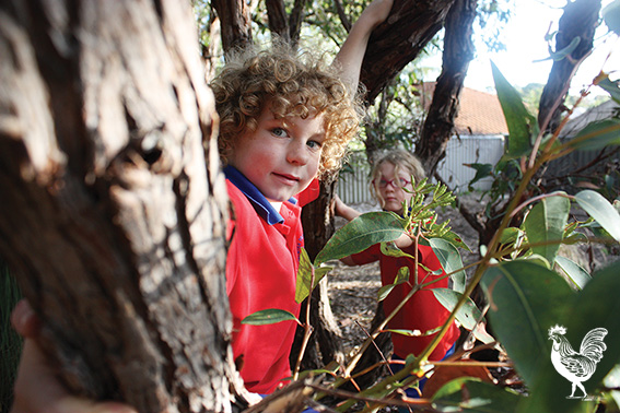 • Jack Grant has a bit of fun in the park. PhotobySteveGrant