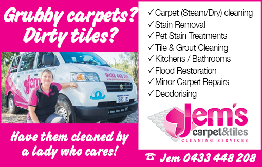 Jems Carpet Cleaning 5x2