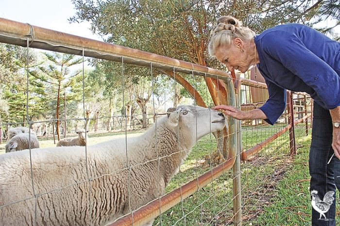 •Jacky Hill is gearing up for another battle to preserve her rural lifestyle. PhotobySteveGrant