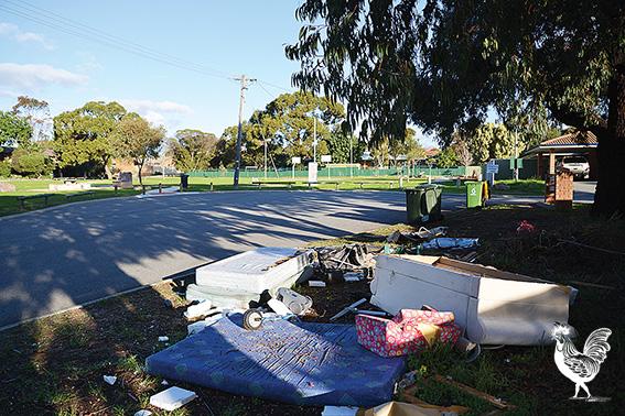 Broken rubbish is strewn around the verges near Davis Park. Photo by Marta Pascual Juanola