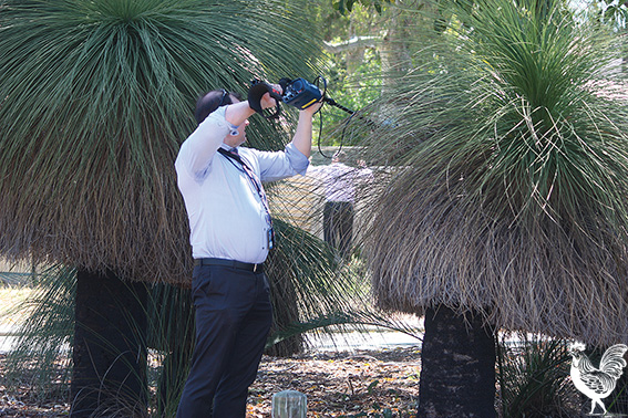 • A police forensics team searched balgas and backyards in Coolbellup on Thursdasy afternoon seeking clues to the unsolved murder of Ian Bosch early Saturday morning. Photo by Steve Grant