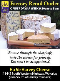 45-ha-ve-harvey-cheese-10x2