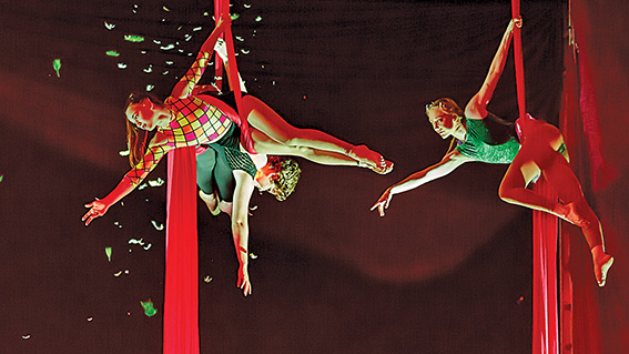 • Circus WA has until April to find a new home, with Artsource setting a firm date to move out.